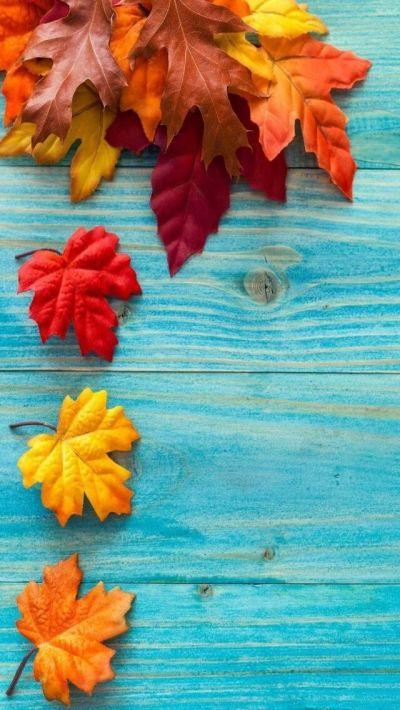 iPhone Wall: Thanksgiving tjn | FALL JUNK | Pinterest | Thanksgiving, Walls and Wallpaper