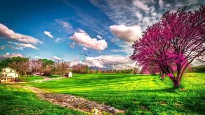 Landscape beautiful spring nature -. Spring Wallpapers. Seasons Wallpapers. download beautiful ...