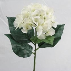 9 00 Single Large Hydrangea Available in 5 Colours Purple