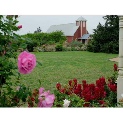 Medium Crop Of Antique Rose Emporium