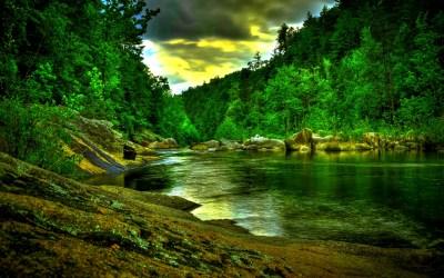 Amazon Rainforest Wallpaper - Wallpaper, High Definition, High Quality, Widescreen
