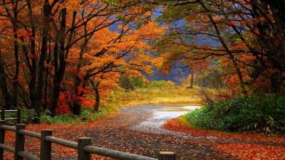 Autumn Wallpapers | Best Wallpapers
