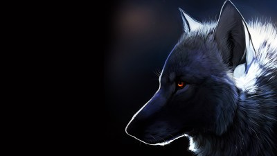 Wolf Wallpapers | Best Wallpapers