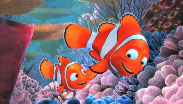 Nemo e o pai, Marlin, são da espécie peixe-palhaço mas não são tão engraçados assim... (Foto: Reprodução)