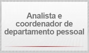 Analista e coordenador de departamento pessoal (Foto: G1)