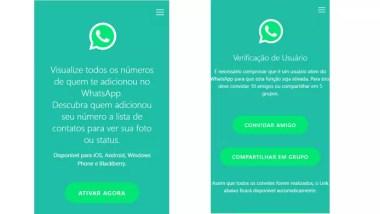 Golpe engana usuários oferecendo função falsa para o WhatsApp (Foto: Divulgação/Psafe)