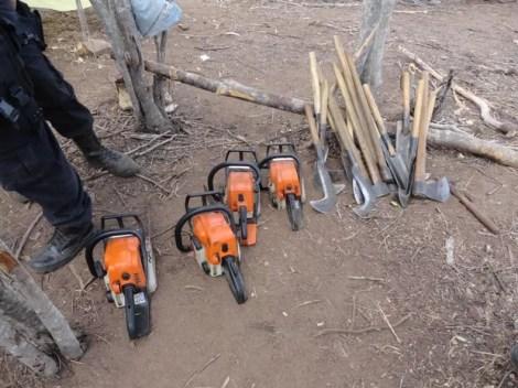 Motosserras, machados e foices foram apreendidos (Foto: Divulgação/CPRH)