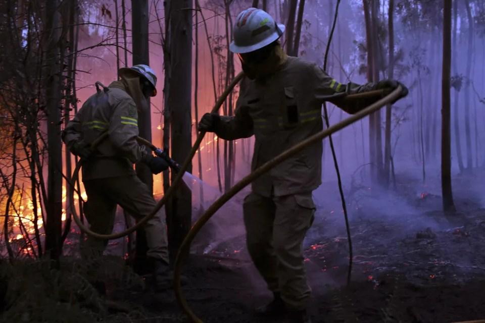 Bombeiros tentam combater o incêndio florestal de atingir a vila de Avelar, na região central de Portugal, durante o amanhecer deste domingo (18) (Foto: Armando Franca/AP) Incêndio em Portugal dura mais de 24 horas; mais de 60 morreram Incêndio em Portugal dura mais de 24 horas; mais de 60 morreram portugal3