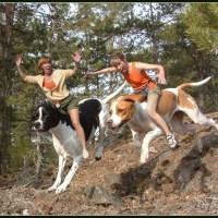 野生にいるはずのない犬の種類はどうやって?