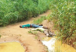 Cultists kill 11 in Ogun