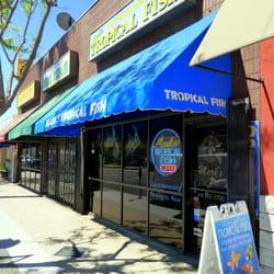 Mark?s Tropical Fish   41 Photos   Pet Stores   Studio City   Studio