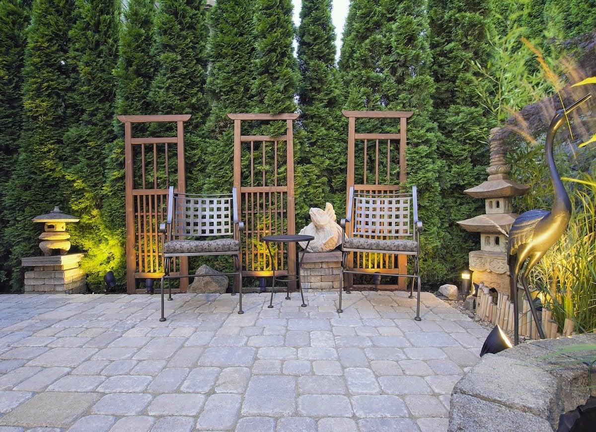 Favorite Backyard Landscaping Backyard Backyard Plants To Grow Bob Vila Plants Arborvitae Hedge outdoor Plants For Backyard Landscaping