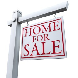 Small Crop Of Home For Sale Sign