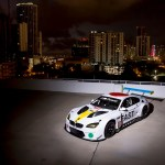 John Balessari BMW M6 GTLM Art Car #19.