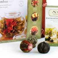 Numi Organic Flowering Tea Set $23.99 Shipped