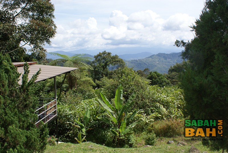 Cool, rolling hills at J Residence near Kinabalu Park in Sabah, Borneo