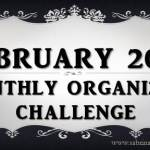 February's Monthly Organizing Challenge: Tax Return Organizing