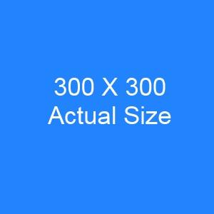 300x300 Banner size