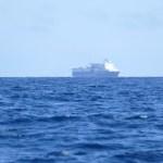 Noisy fossil survey ship