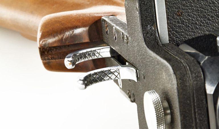 lecia-gun-auction-7