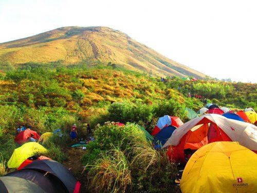 indonesian-544791_960_7201