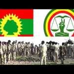 MAGACYADDA SARAAKIIL KA TIRSANAAN JIRAY JABHADIHII ETHIOPIA KA SOO HORJEEDAY OO XILAL LOO DHIIBAY