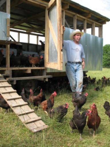 "An ""eggmobile"" at Polyface Farm."