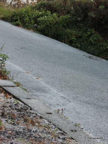 ひょうで真っ白になった道路