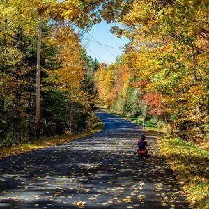 Enjoying a warm fall day mainething fallfoliage homeschooling maine recess
