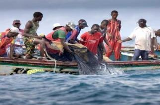Mauritanie-Sénégal : inquiétude des pêcheurs sénégalais