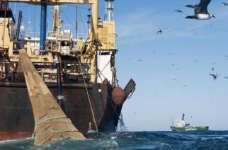 Guinée : reprise de la pêche industrielle après deux mois d'interdiction