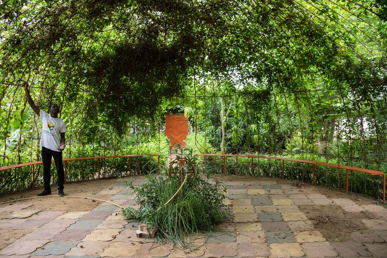 Dans le jardin communautaire poussent toutes sortes de fruits et légumes. CRÉDITS : MATTEO MAILLARD