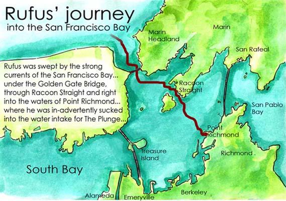 rufus journey