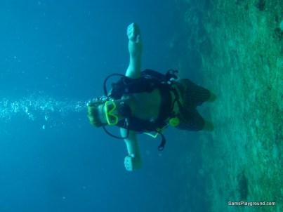 Buddy Dive Photo