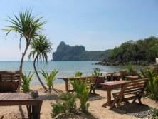 Sunflower Beach Bar View