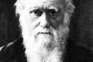 """Charles Darwin skrev på 50 ställen, i """"Om arternas uppkomst"""", om naturens samarbete som förutsättning för evolutionen. På två ställen skrev han om """"survival of the fittest"""" och på 95 stället skrev han om naturens kärlek."""