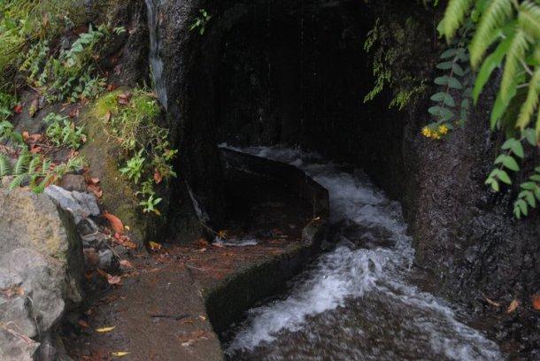 Agua en San Andrés y Sauces