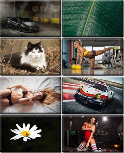 Download LIFEstyle News MiXture Images. Wallpapers Part ...