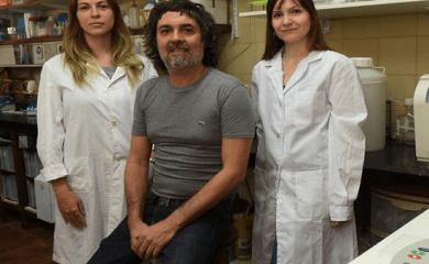 Importantes avances contra los cánceres de hígado más letales por científicos rosarinos