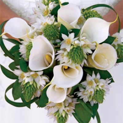 Wedding Flowers For Bouquet Sang Maestro