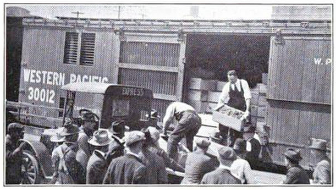 Wine grapes being sold from the train at Drumm St. in San Francisco