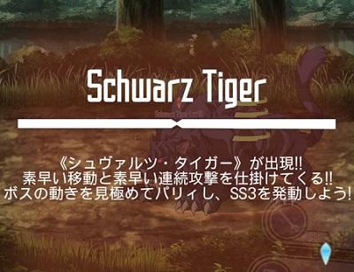 シュヴァルツ・タイガー