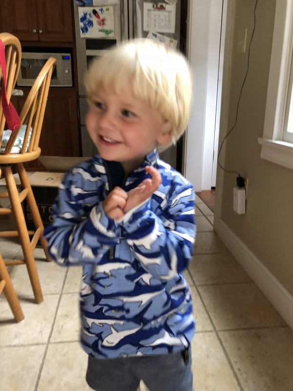 stitch fix kids review sarah fit shark pull over