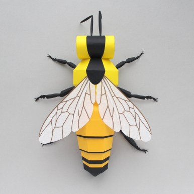 Sarah Louise Matthews 3D Paper Engineering Bee Insect