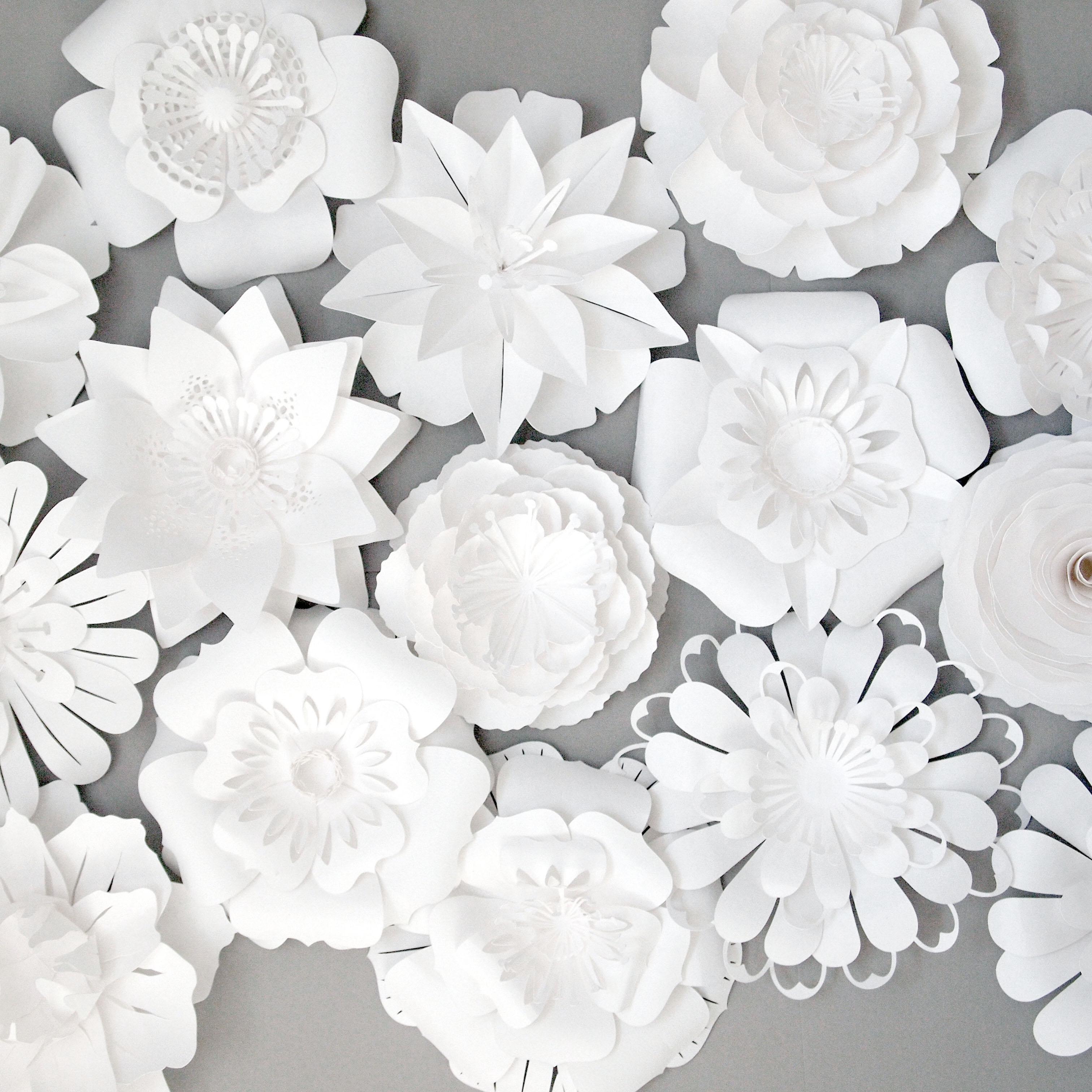Paper flowers sarah louise matthews papercut white paper flowers mightylinksfo