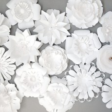 Papercut White Paper Flowers