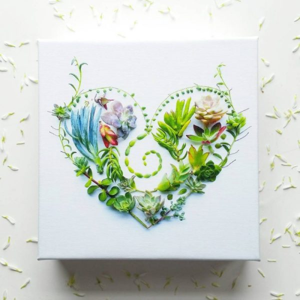 succulent-heart-canvas