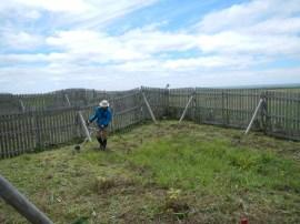 再生地柵内での作業