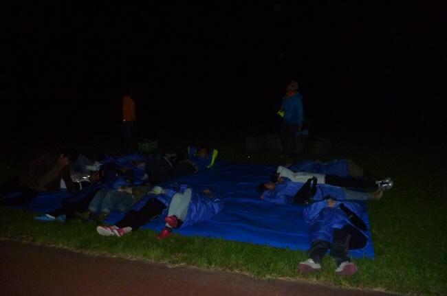 草原に寝転がって星空観察