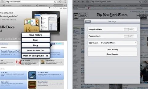 Terra Top 10 Best Apple iPad Web Browsers For Improved Browsing